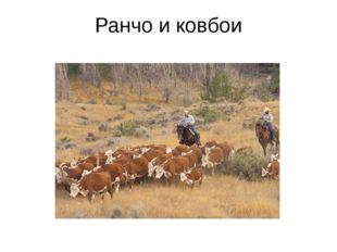 Ранчо и ковбои