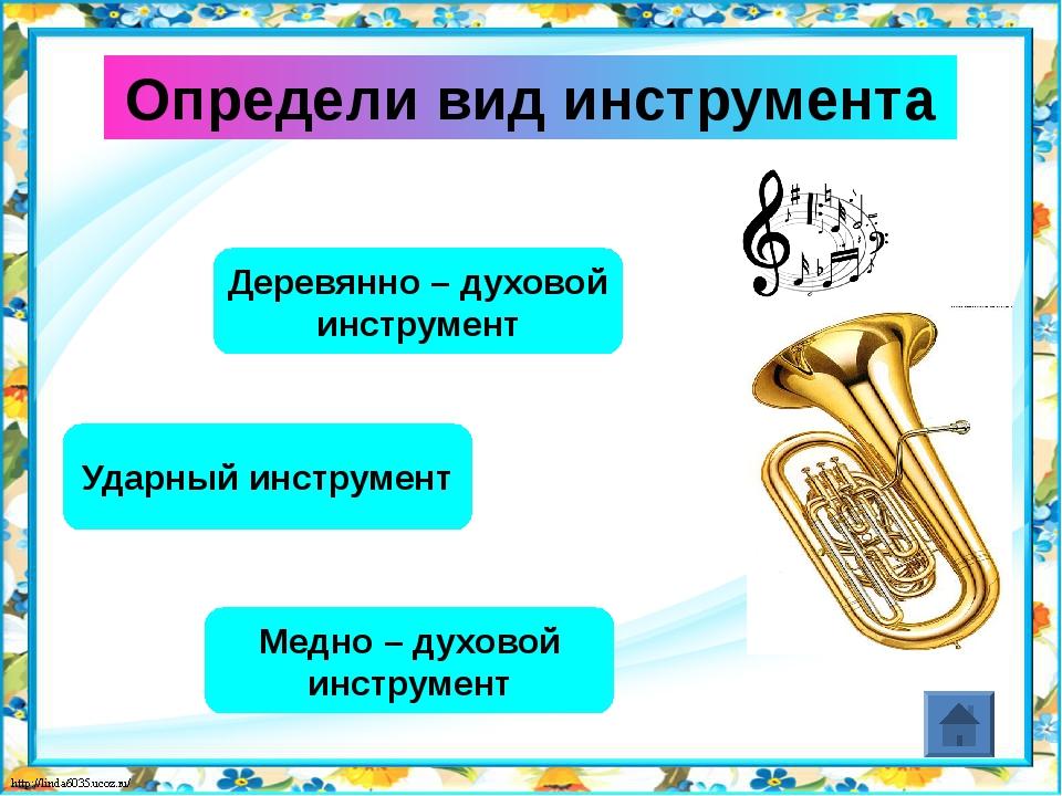 Определи вид инструмента Деревянно – духовой инструмент Струнно – щипковый ин...