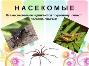 Н А С Е К О М Ы Е Все насекомые передвигаются по-разному: летают, ползают, пр