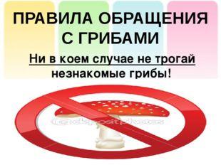 ПРАВИЛА ОБРАЩЕНИЯ С ГРИБАМИ Ни в коем случае не трогай незнакомые грибы!