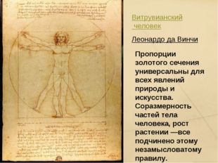 Витрувианский человек Леонардо да Винчи Пропорции золотого сечения универсаль