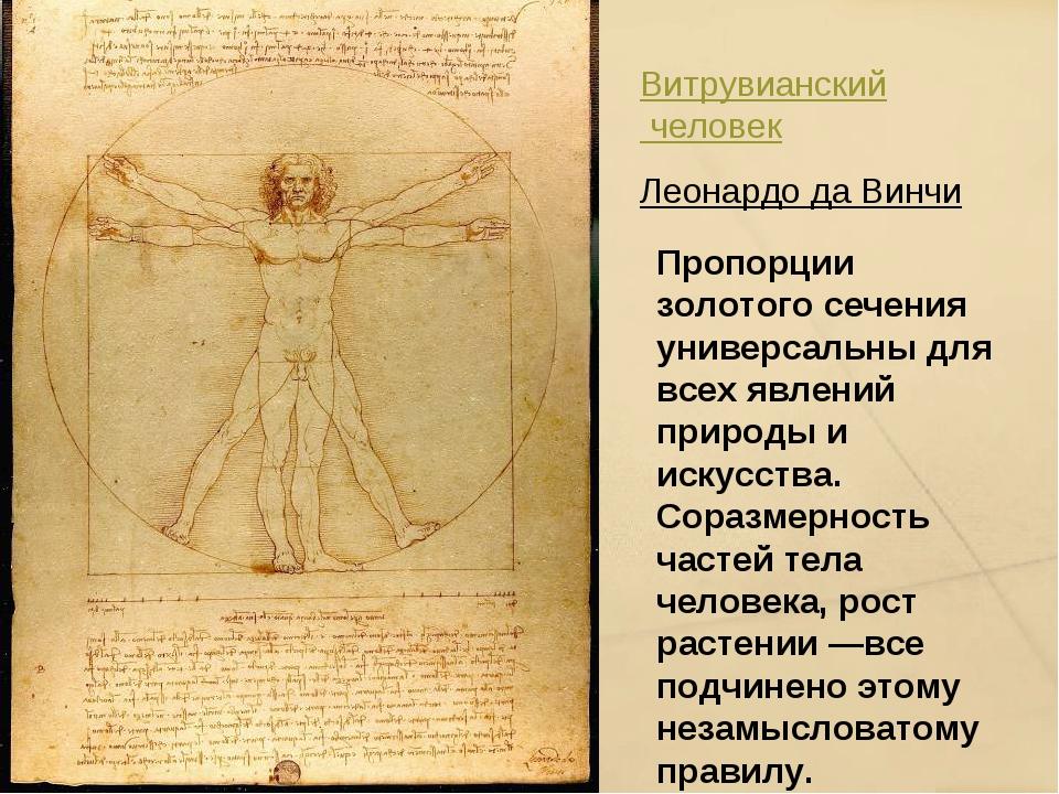 Витрувианский человек Леонардо да Винчи Пропорции золотого сечения универсаль...