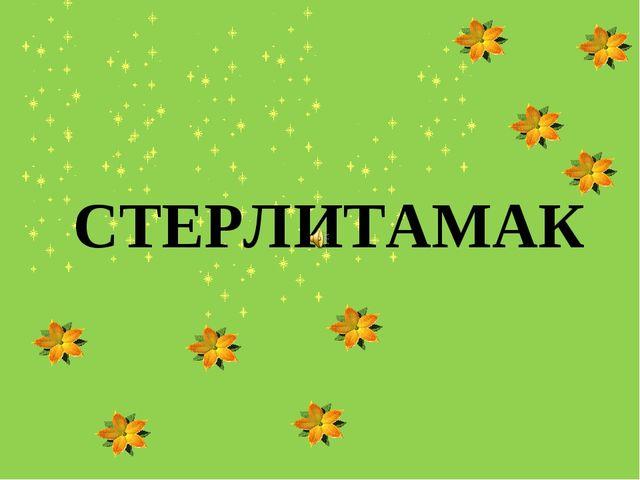 СТЕРЛИТАМАК Выполнила: Абдуллина Алсу Салаватовна 5 «Б» класс