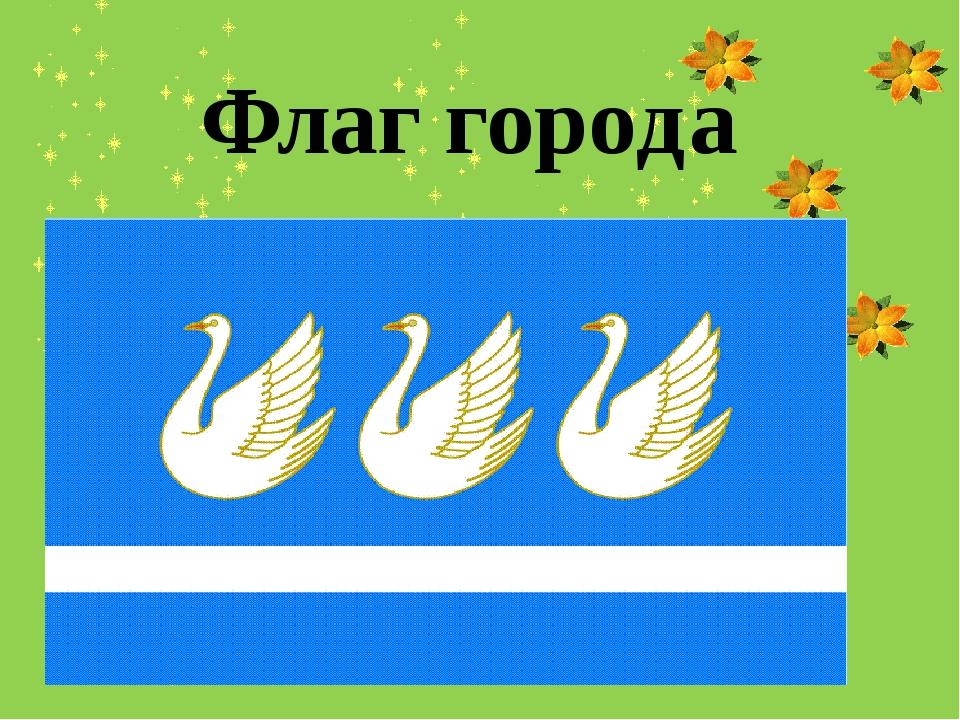 Флаг города Выполнила: Абдуллина Алсу Салаватовна 5 «Б» класс