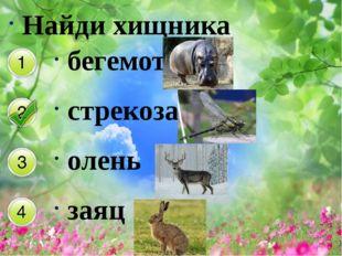 Найди хищника бегемот стрекоза олень заяц
