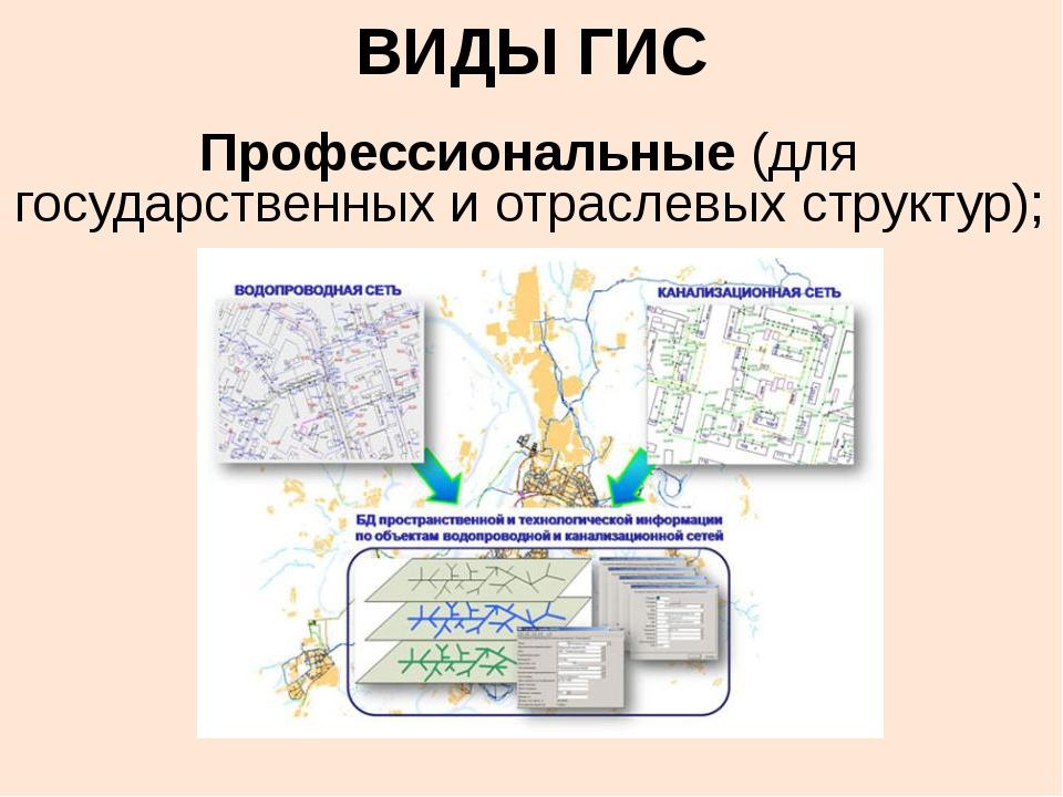 ВИДЫ ГИС Профессиональные (для государственных и отраслевых структур);