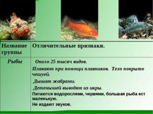 Название группыОтличительные признаки. Рыбы Около 25 тысяч видов. Плавают п
