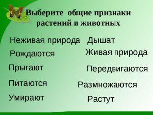 Выберите общие признаки растений и животных Неживая природа Размножаются Жива