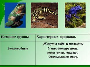 Название группыХарактерные признаки. Земноводные  Живут в воде и на земле.