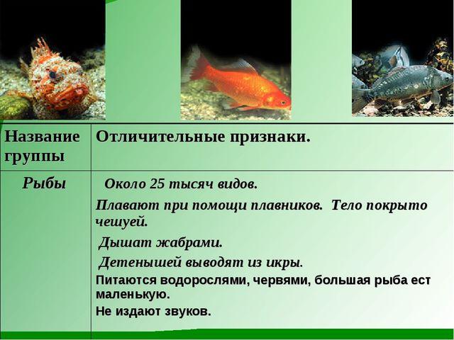 Название группыОтличительные признаки. Рыбы Около 25 тысяч видов. Плавают п...