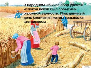 В народном Обычае сбор урожая испокон веков был событием огромной важности.