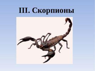 III. Скорпионы