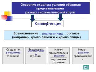 Освоение сходных условий обитания представителями разных систематической груп