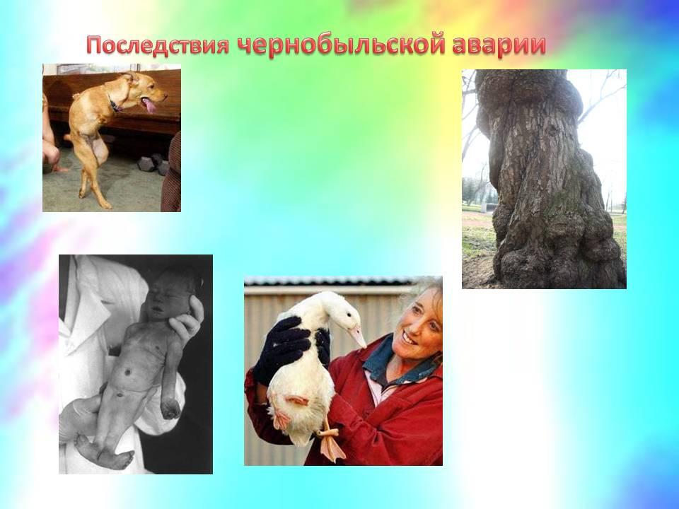 hello_html_763b2fcb.jpg