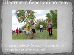 Шествие с березкой по селу Оторвать веточку березки – все равно, что «оторват