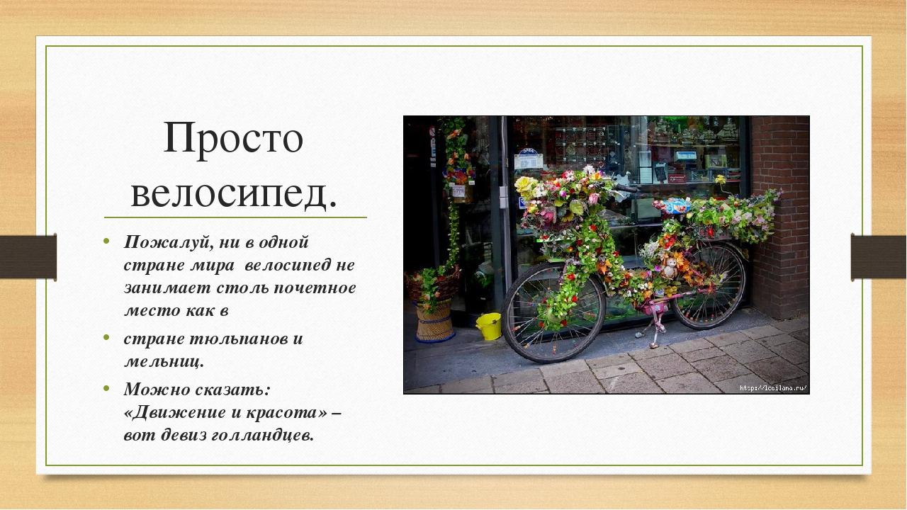 Просто велосипед. Пожалуй, ни в одной стране мира велосипед не занимает столь...