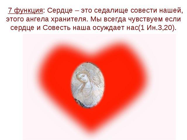 7 функция: Сердце – это седалище совести нашей, этого ангела хранителя. Мы в...