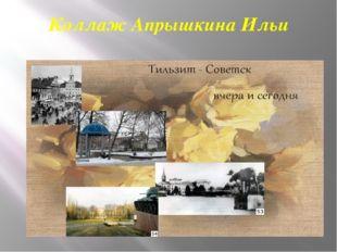 Коллаж Апрышкина Ильи