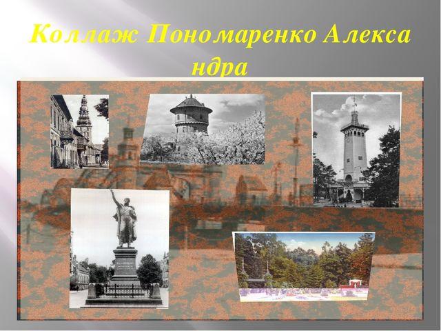Коллаж Пономаренко Александра