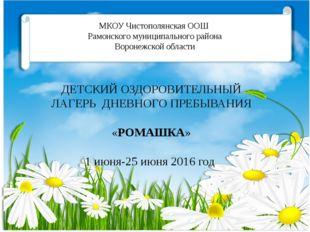 МКОУ Чистополянская ООШ Рамонского муниципального района Воронежской области