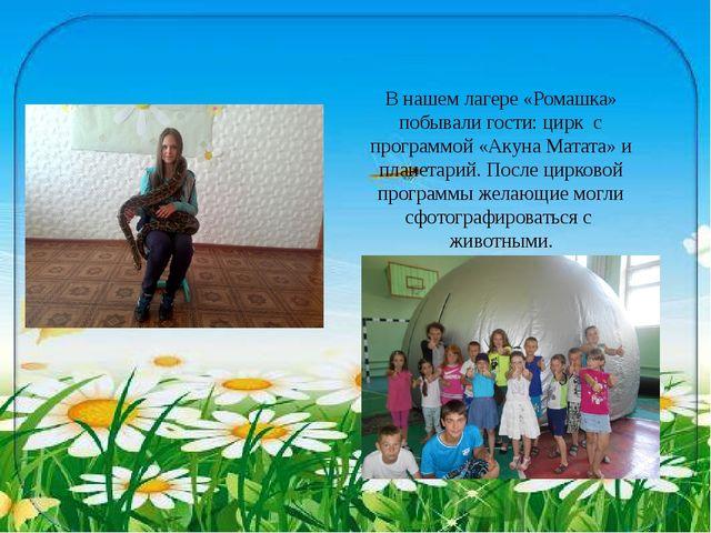 В нашем лагере «Ромашка» побывали гости: цирк с программой «Акуна Матата» и п...