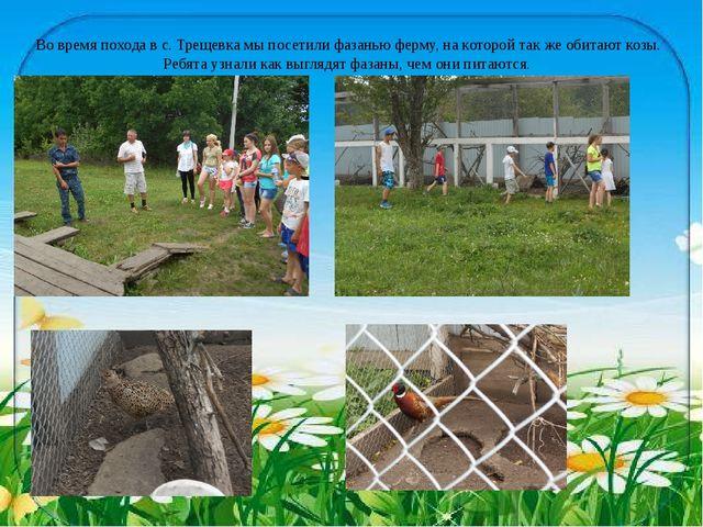 Во время похода в с. Трещевка мы посетили фазанью ферму, на которой так же об...