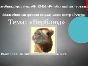 Тема: «Верблюд» Выполнил: воспитатель Феклистова О.И. «Малоубинка орта мекте