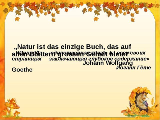 """""""Natur ist das einzige Buch, das auf allen Blättern grossen Gehalt bietet""""..."""