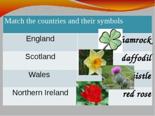 Matchthe countries and their symbols England shamrock Scotland daffodil Wales