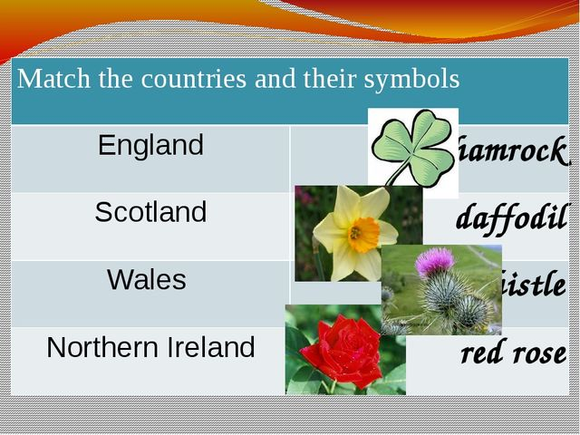 Matchthe countries and their symbols England shamrock Scotland daffodil Wales...