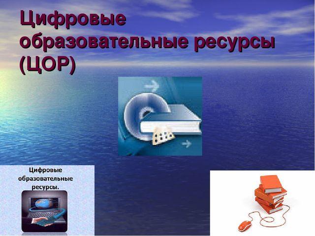 Цифровые образовательные ресурсы (ЦОР)