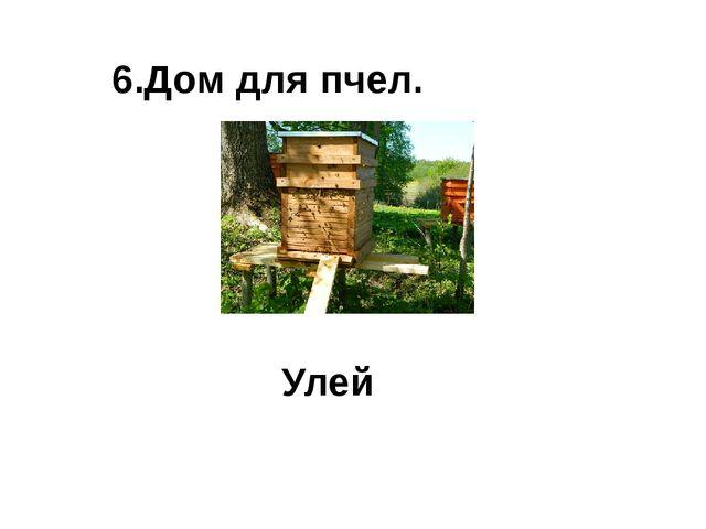 6.Дом для пчел. Улей