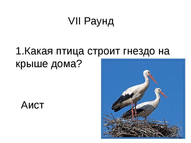 VII Раунд 1.Какая птица строит гнездо на крыше дома? Аист