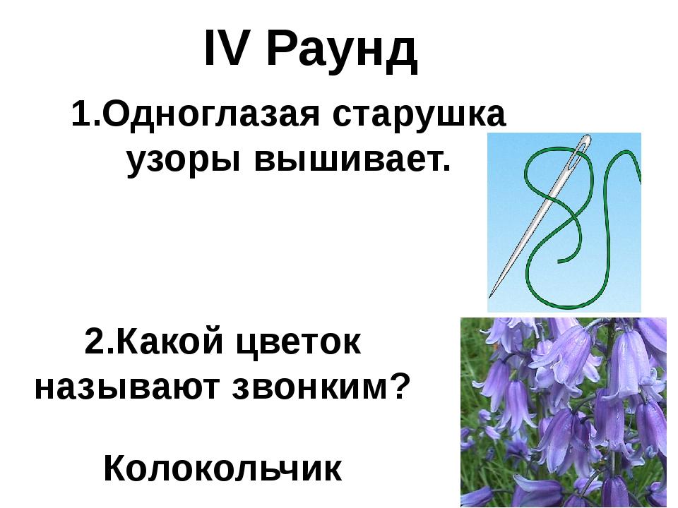 IV Раунд 1.Одноглазая старушка узоры вышивает. 2.Какой цветок называют звонки...