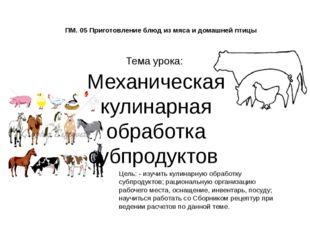 ПМ. 05 Приготовление блюд из мяса и домашней птицы Тема урока: Механическая