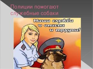 Полиции помогают служебные собаки