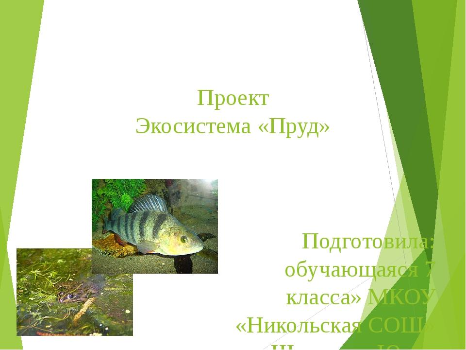 Проект Экосистема «Пруд» Подготовила: обучающаяся 7 класса» МКОУ «Никольская...
