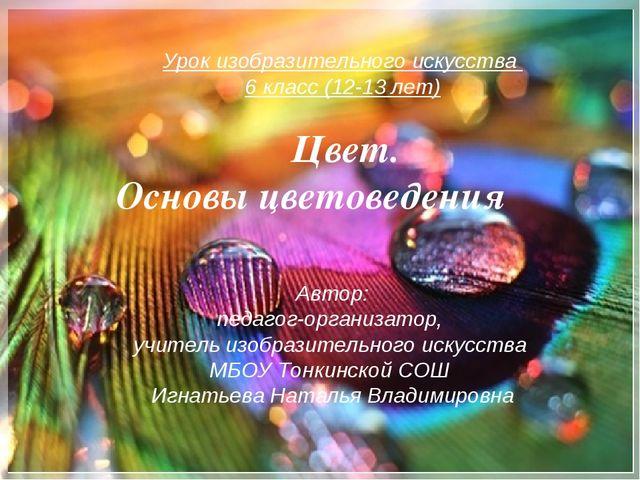 Автор: педагог-организатор, учитель изобразительного искусства МБОУ Тонкинско...
