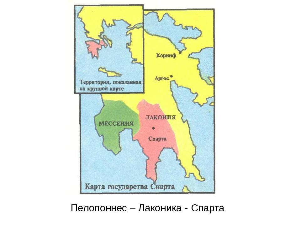 В каком полисе афинах или спарте