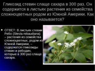 Гликозид стевин слаще сахара в 300 раз. Он содержится в листьях растения из с