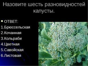 Назовите шесть разновидностей капусты. ОТВЕТ: 1.Брюссельская 2.Кочанная 3.Кол