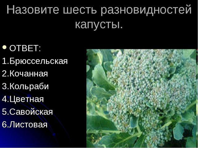 Назовите шесть разновидностей капусты. ОТВЕТ: 1.Брюссельская 2.Кочанная 3.Кол...