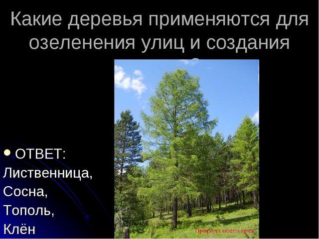Какие деревья применяются для озеленения улиц и создания скверов? ОТВЕТ: Лист...