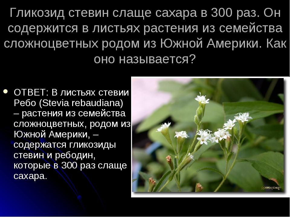 Гликозид стевин слаще сахара в 300 раз. Он содержится в листьях растения из с...