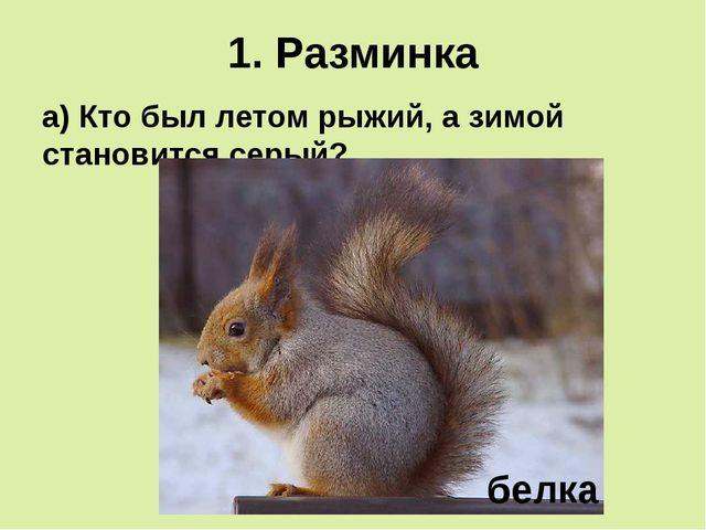 1. Разминка а) Кто был летом рыжий, а зимой становится серый? белка