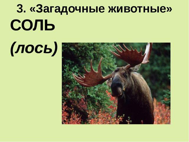3. «Загадочные животные» СОЛЬ (лось)