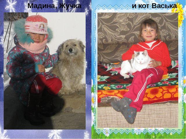 Мадина, Жучка и кот Васька