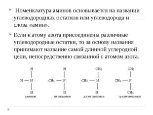 Номенклатура аминов основывается на названии углеводородных остатков или угл