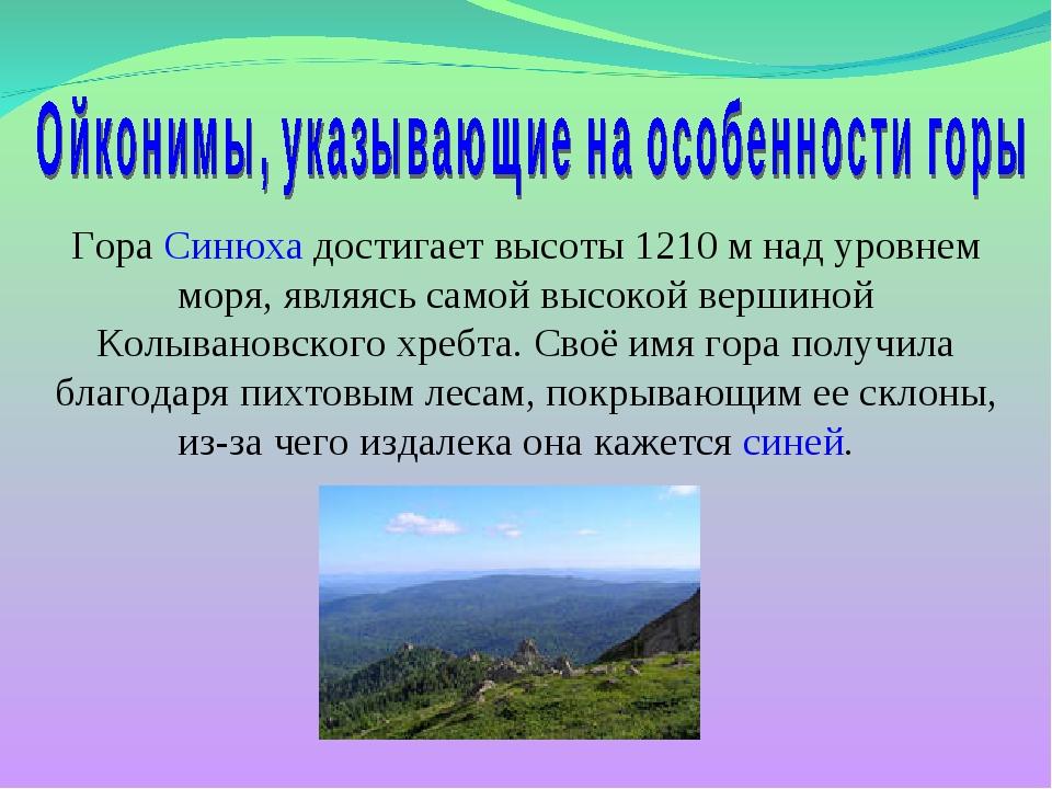Гора Синюха достигает высоты 1210 м над уровнем моря, являясь самой высокой в...