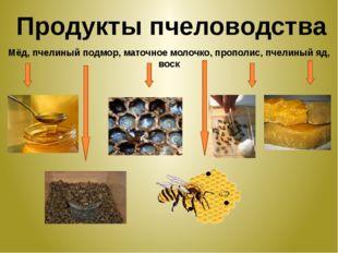 Продукты пчеловодства Мёд, пчелиный подмор, маточное молочко, прополис, пчели